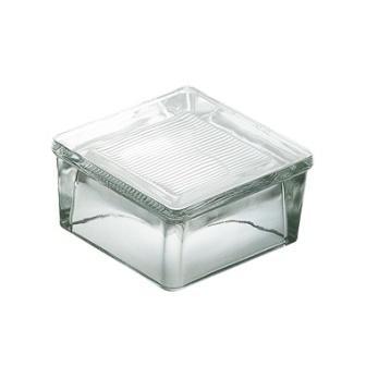 Luksfer pustak szklany podłogowy P 15.80 satynowany La Rochere